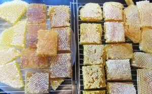 Мед в пита, нарязан на парченца